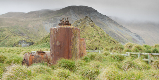 Anare Station, Macquarie Island
